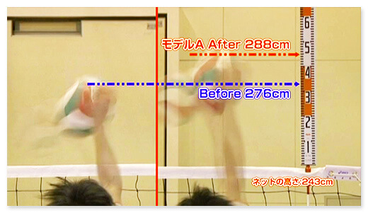 モデルA Before 276cm after 288cm